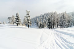 Snow ski run in skiing area Via Lattea Italy Royalty Free Stock Photos