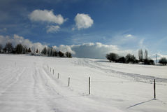 Snow Slope. Landscape in winter; meadows and paddocks royalty free stock photo