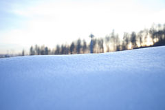 Snow slope against forest Royalty Free Stock Photography