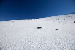 Snow slope at Gredos mountains Royalty Free Stock Photo