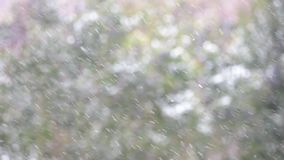 Snow with slowmotion effect stock footage