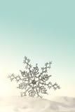 snow snowfiake półmusujące Zdjęcia Royalty Free