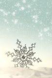 snow snowfiake półmusujące Obrazy Royalty Free