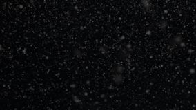 Snow,snowflakes, rendered animation of snowing , Falling snowflakes, snow transperent background