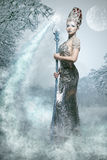 Snow sorceress Royalty Free Stock Image