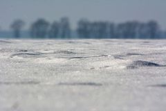 Snow sparkles in sunlight on the field with tree line on the background, shallow depth of field, copy space. Snow sparkles in sunlight on the field with tree stock photography