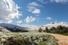 Snow in Spring Stock Images