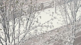 Snow in spring.Snow-covered spring street with green leaves in the trees under the snow. Snow in spring. Strong snow falls on the street trees in green foliage stock video footage