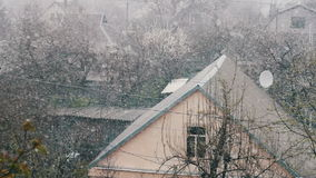 Snow in spring.Snow falls on the street trees in green foliage and blooming. Snow in spring. Blizzard in the spring. Strong snow falls on the street trees in stock video footage