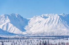 Snow, spruce trees,vista,Alaska. Stock Photography