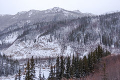 Snow, spruce trees,vista,Alaska. Stock Photo