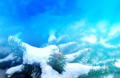 Snow on spruce winter landscape background close-up for the decoration of a holiday card. Snow on spruce winter landscape background close-up for the decoration stock photo