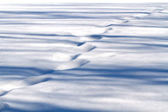 Snow steps. Steps and shadows on the snow. Shallow focus Royalty Free Stock Photography