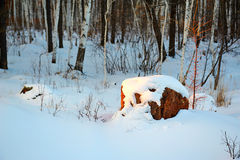 The snow and stone sunrise Royalty Free Stock Image