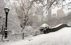 Free Snow Storm Stock Photos - 7585563