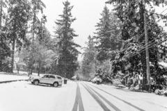 Snow Storm In Burien 6. A snow storm begins in Burien, Washington royalty free stock photo