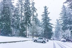 Snow Storm In Burien 5. A snow storm begins in Burien, Washington royalty free stock photos