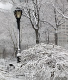 During snow storm in Central Park, New York city Stock Image