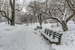 Snow storm in Central park Royalty Free Stock Photos