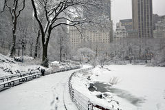 Snow storm, Central Park NYC Royalty Free Stock Photography