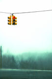 Snow storm day. View of a traffic light during a snow storm. The background is blurred by the falling snow Royalty Free Stock Images