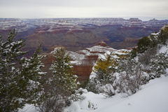 Snow Storm in Grand Canyon, AZ Royalty Free Stock Images