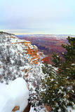 Snow Storm in Grand Canyon, AZ Royalty Free Stock Image