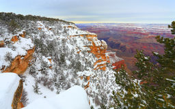 Snow Storm in Grand Canyon Forest, AZ Stock Photography