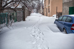 Snow storm hits city. street after blizzard Royalty Free Stock Images