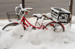 Snow storm hits Montreal, Canada photographie stock libre de droits