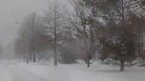 Snow storm jonas  snowstorm stock video footage