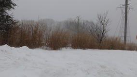Snow storm jonas  snowstorm stock footage