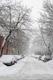 Snow storm  in Montreal Royalty Free Stock Photography