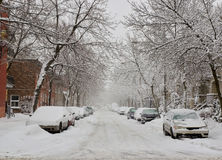 Snow storm in Montreal stock images