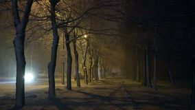Snow storm night city. Yellow lantern night. Snow, storm, blizzard Park in the city stock video