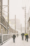 Snow storm in Tokyo Japan Royalty Free Stock Images