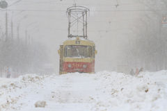 Snow storm in the  is a tram Royalty Free Stock Photography