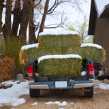 Snow straw bales truck in Nevada USA Royalty Free Stock Image