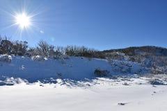 Snow sun winter ski blue sky mountain nordic bright cold white fun. Nordic ski snow sun winter Royalty Free Stock Photo