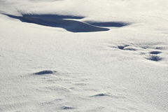 Snow surface Stock Image