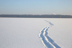 Snow on the surface of the frozen lake Stock Image