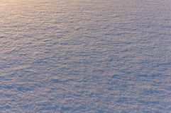 Snow surface texture in evening Stock Photo