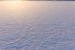 Snow surface texture in evening sunlight Royalty Free Stock Photography