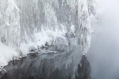 Snow-svängande förgrena sig över - bevattna Arkivbild