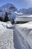 Snow in Swiss Alps  Royalty Free Stock Image