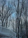 Snow täckt däck Fotografering för Bildbyråer