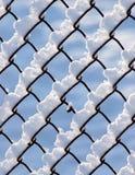 Snow täckt staket Royaltyfria Bilder