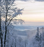 Snow-täckte berg Royaltyfri Bild