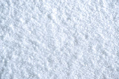 Free Snow Texture Royalty Free Stock Images - 12878039