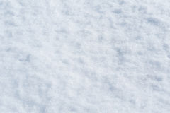 Free Snow Texture Royalty Free Stock Photo - 18915095
